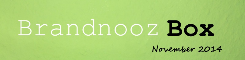 Brandnooz Box November 2014
